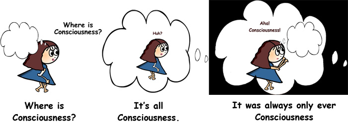 Searching Consciousness